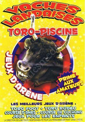 Jeux De Toro Gratuit