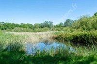Découverte de la Lagune de Claire de Bel