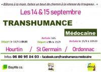 Transhumance Médocaine 2019