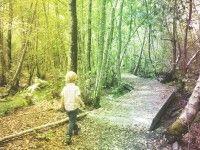 Récré nature sur le sentier de la Berle