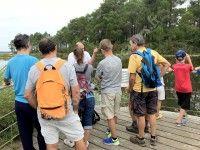 Excursion nature sur le sentier de la Berle