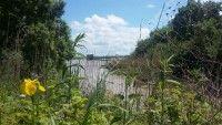 Balade pédestre : Excursion nature dans les marais