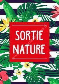 Sortie Nature Nocturne