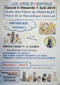 Braderie & Défilé Canin