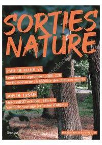 Sortie Nature : Découverte de la vannerie sauvage