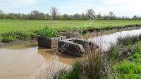 Balade pédestre : Détective de la nature dans les marais