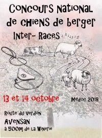 Concours National de Chiens de Berger
