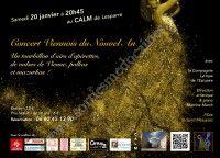 Concert Viennois du Nouvel An