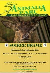 SOIREE BRAME