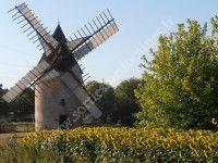 Visite guidée d'un moulin à vent du XIXe siècle