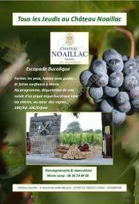Escapade bucolique au Château Noaillac